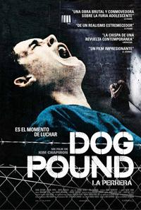dog_pound_26984